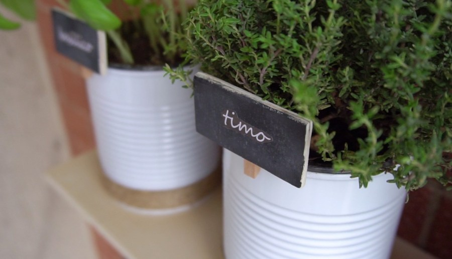 Upcycling tin cans to create your very own herb garden