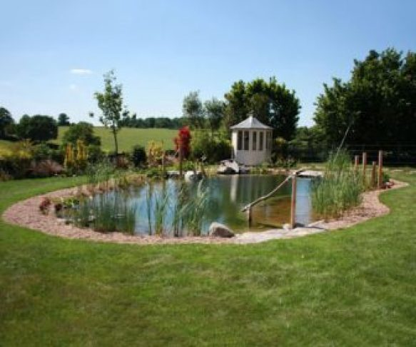 Choose the right location for your natural swimming pool
