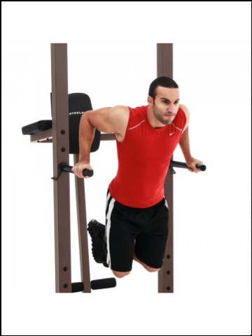 marcy power tower dips