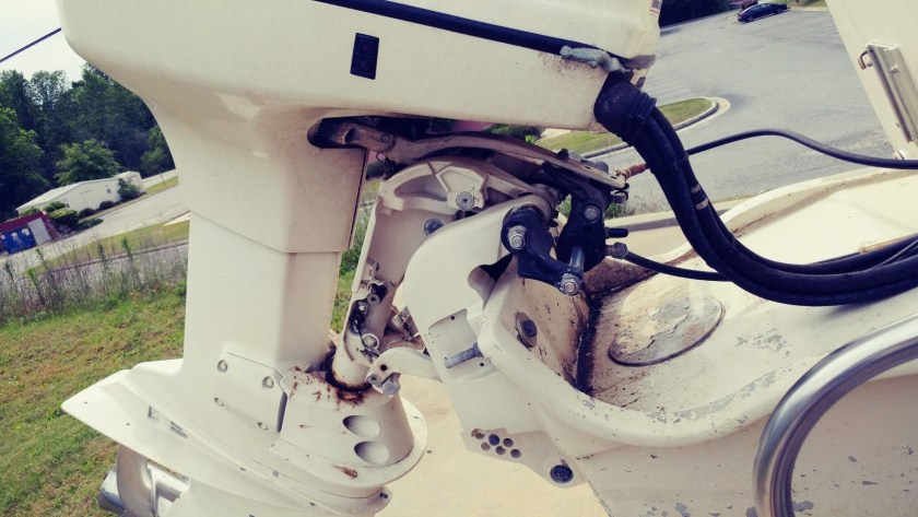 Grady_White_225HP_Evinrude_close_up