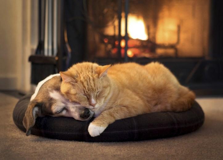 cozy safe fireplace