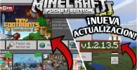 En este post encontrarás a Minecraft Pocket Edition en su versión 1.2.13.5 totalmente completa para descargar a tu Android (.APK). ¡ENTRA!