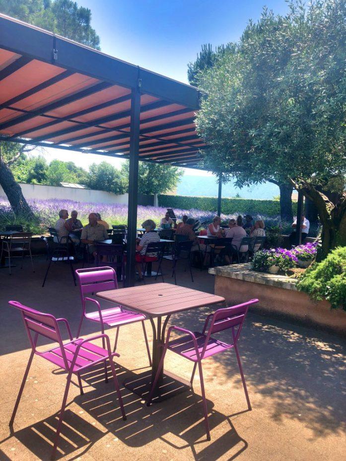 Vaikkei museoon menisi sisälle, voi takapihalla nauttia kahvista ja violetista väriloistosta.