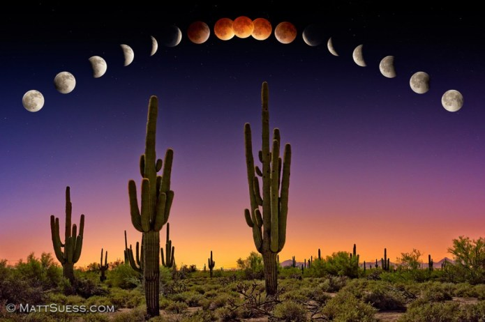 Suess Lunar Eclipse over Phoenix web