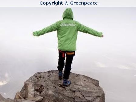 Greenpeace verzockt Spendengelder in Millionenhöhe