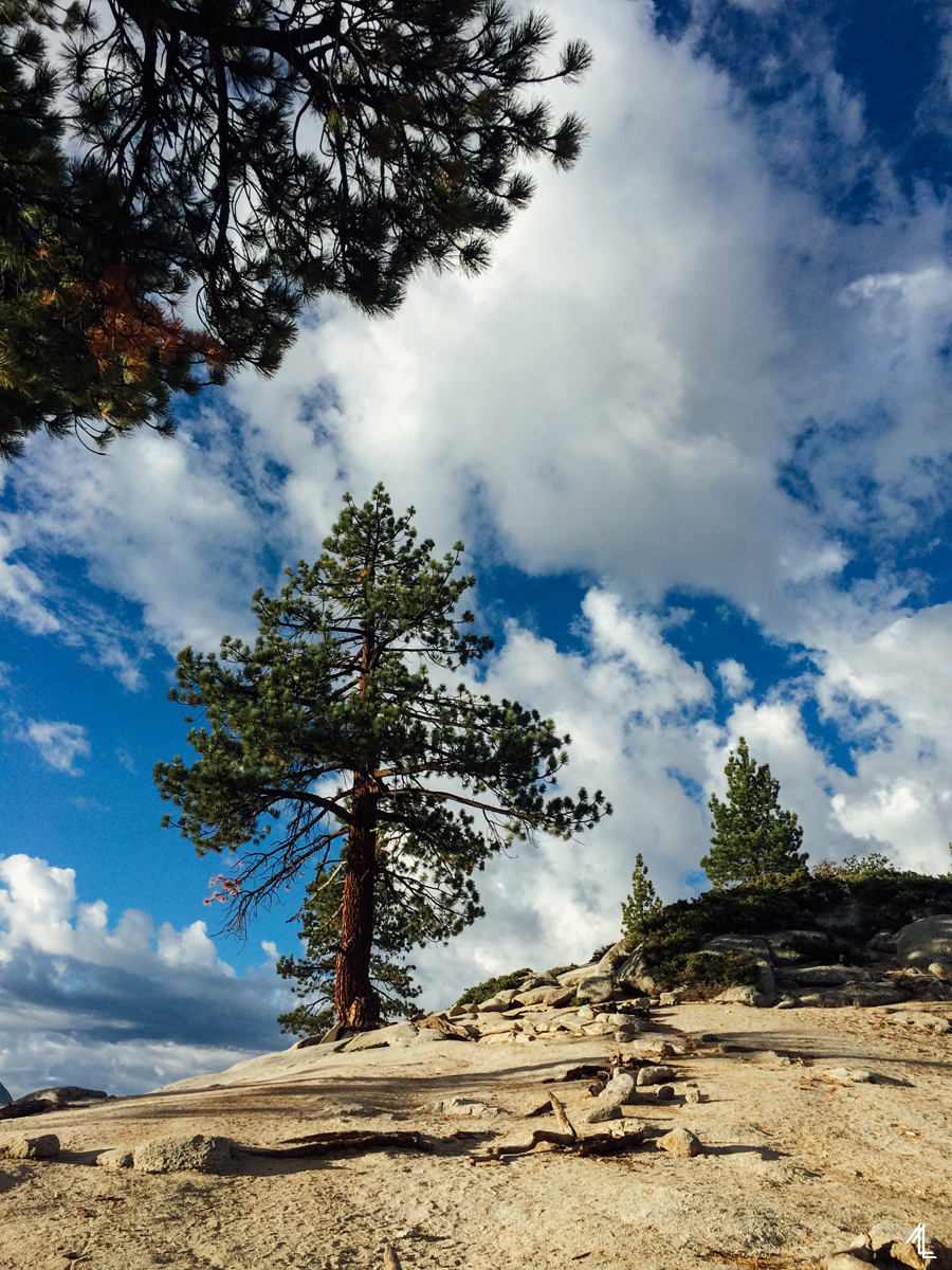 ML-Yosemite-008