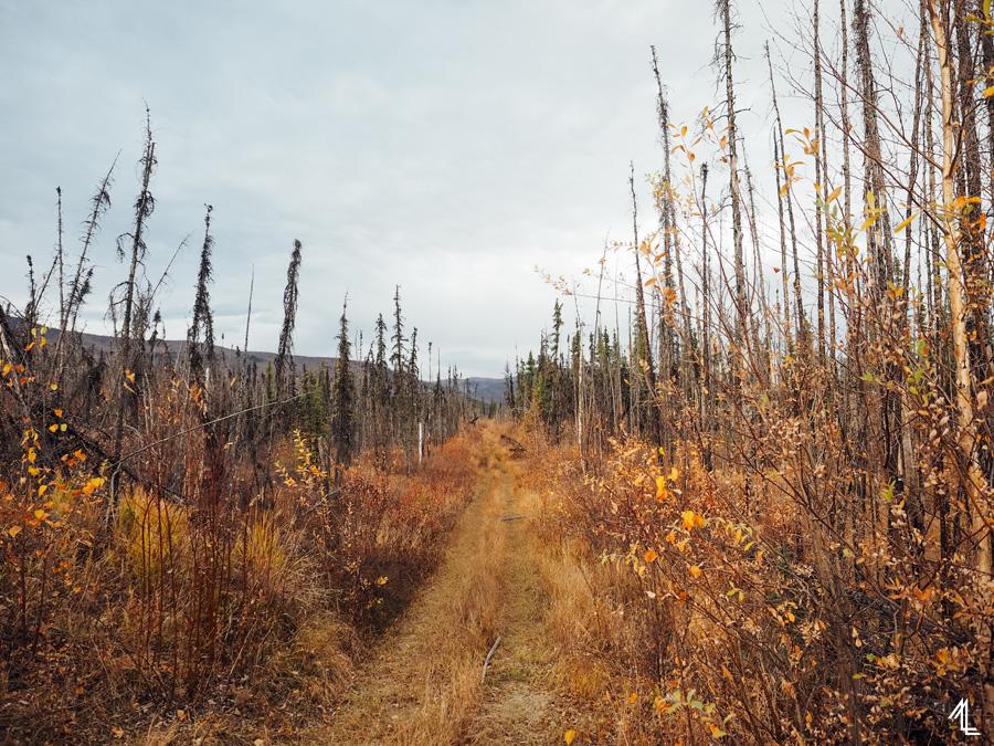 MellyLee-Alaska-014