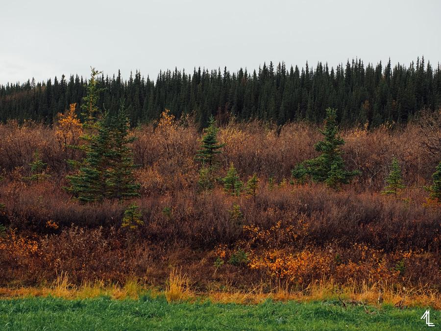 MellyLee-Alaska-025