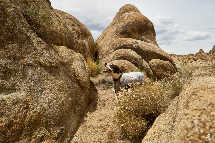 Alabama Hills by Melly Lee (Mellylee.com)