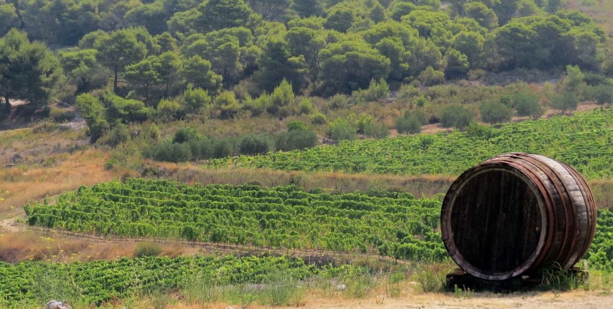 Wine of Croatia