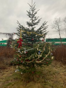 Image is of a Christmas tree.