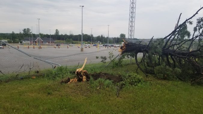 Image of a downed tree and busted fence.