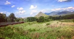 treno-jungla