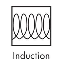 Induction Symbol