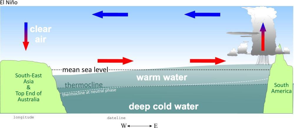 medium resolution of diagram of el nino wiring diagram portal el nino event diagram of el nino