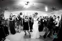 Wedding Cheval Farm El Centro Ca Jessica & Ray