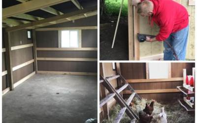 Chicken Coop Spring Cleaning Checklist
