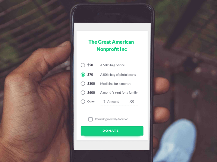 sample nonprofit donation page loaded on a cell phone screen