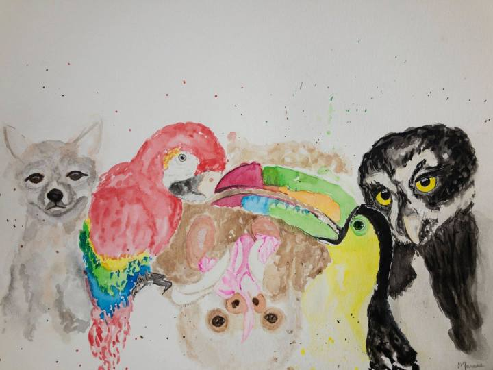 watercolor of animals at toucan rescue ranch