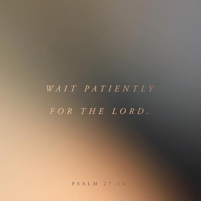 Psalms 27:14 NLT