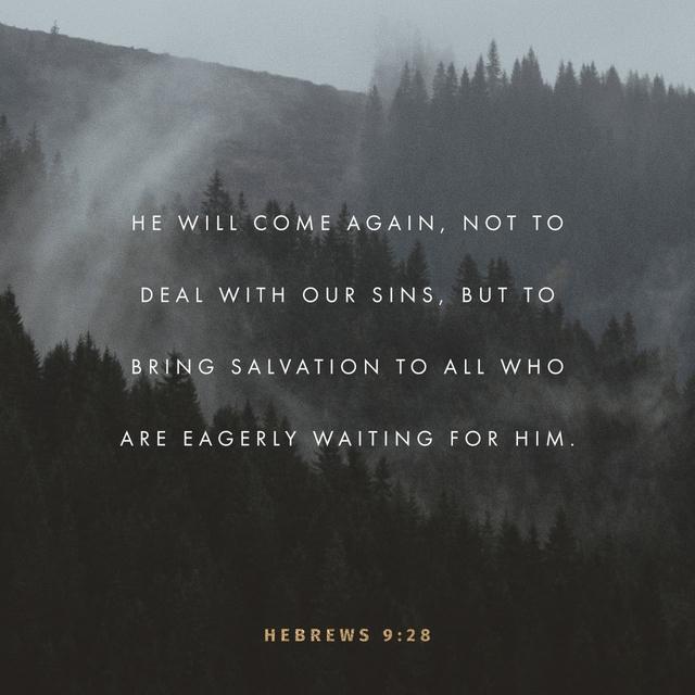 Hebrews 9:28 NLT