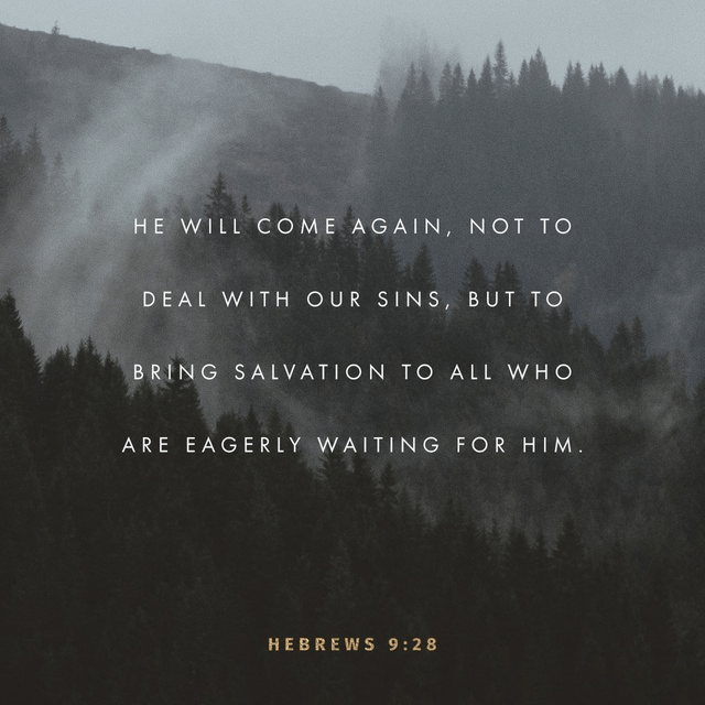 Hebrews 9:28 NLT