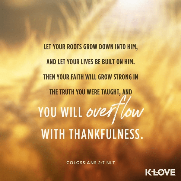 Colossians 2:7 (NLT)