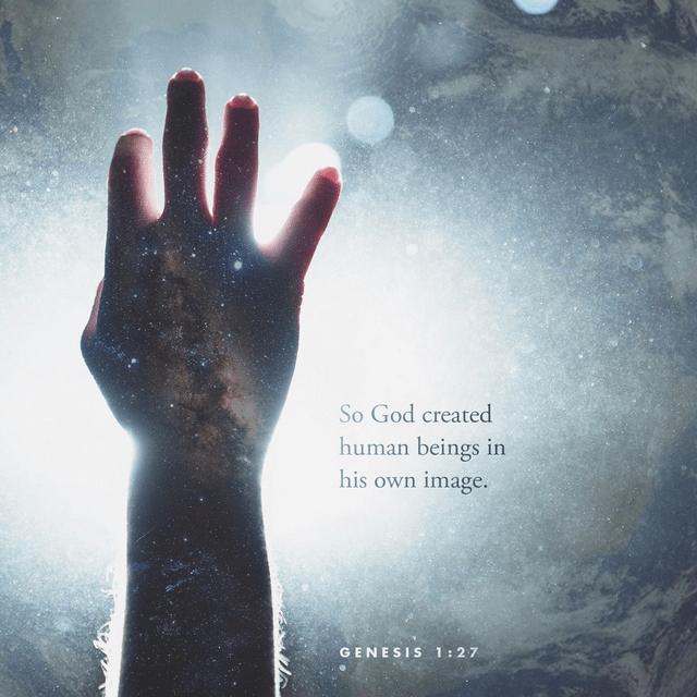 Genesis 1:27 NLT