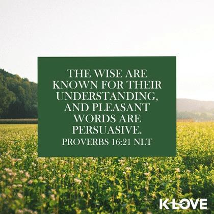 Proverbs 16:21 (NLT)