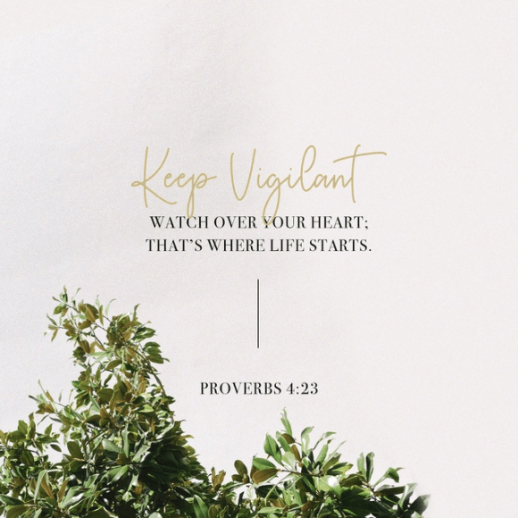 Proverbs 4:23 MSG
