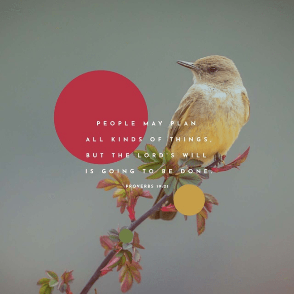 Proverbs 19:21 GNT