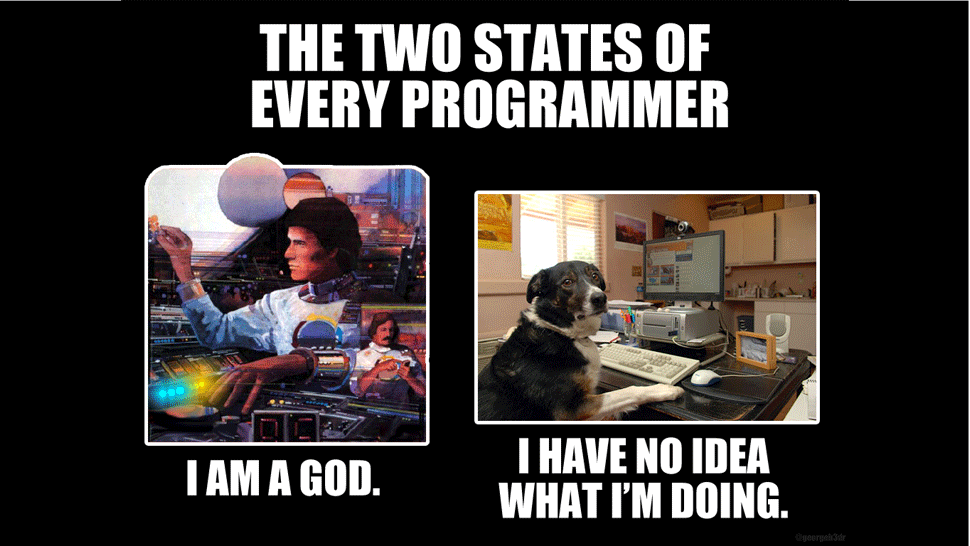 Two states of every programmer meme