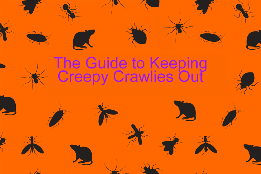 pests vermin creepy crawlies vector black and orange