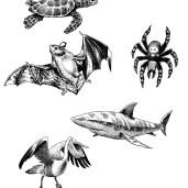 Eksotiske dyr samlet
