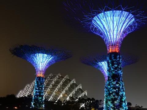 ブルーもきれいですね!後ろのドームはクラウドフォレストかな?