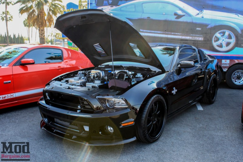 Fabulous_Fords_2015_Mustangs-6