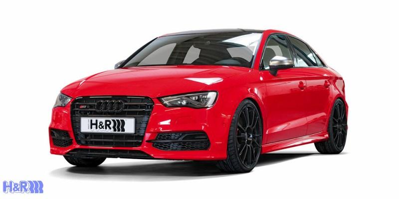 Audi_8V_S3_On_HR_Springs_000