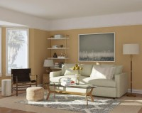 Transform Any Space With These Paint Color Ideas | Modsy Blog