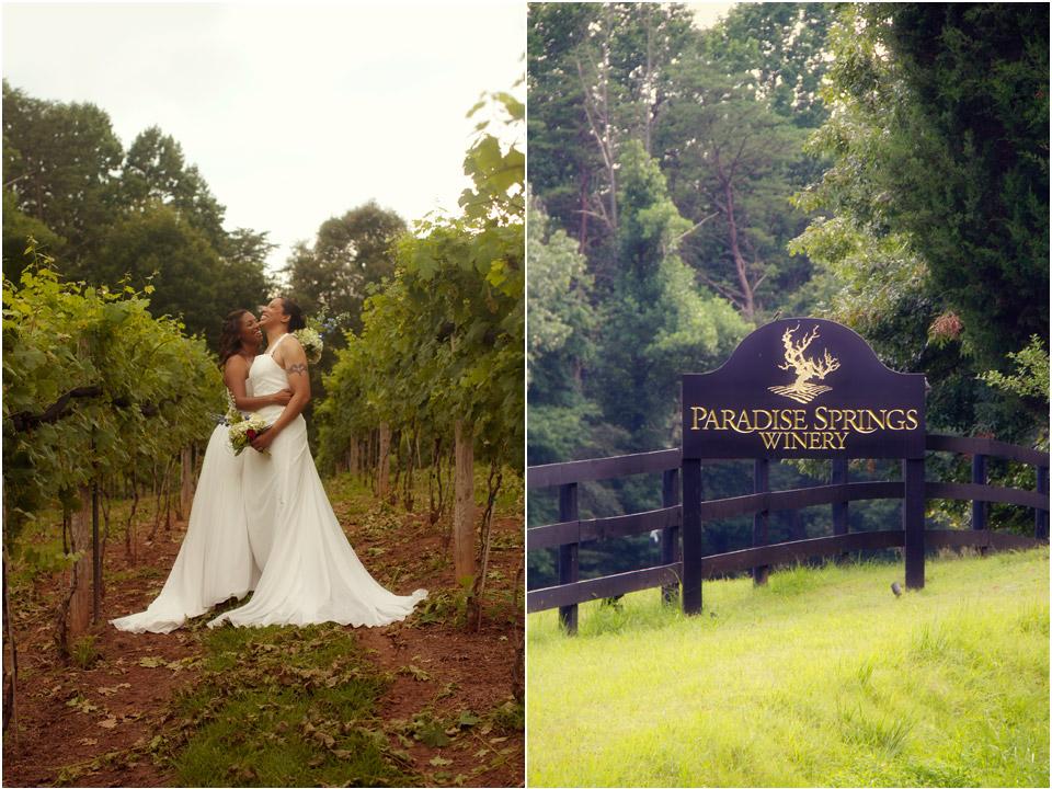 Paradise Springs Winery Wedding Unique Wedding Ideas