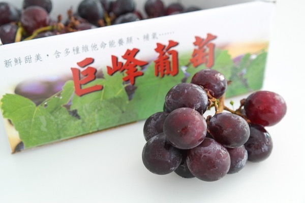 kyoho-grapes
