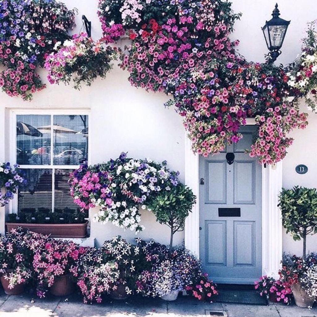 flower house goals homedecor