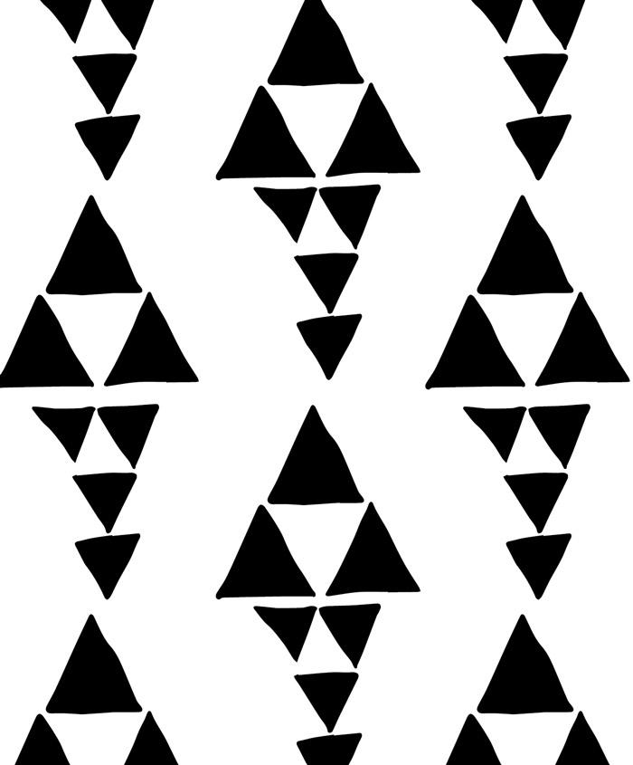 Zwart-wit sierkussen
