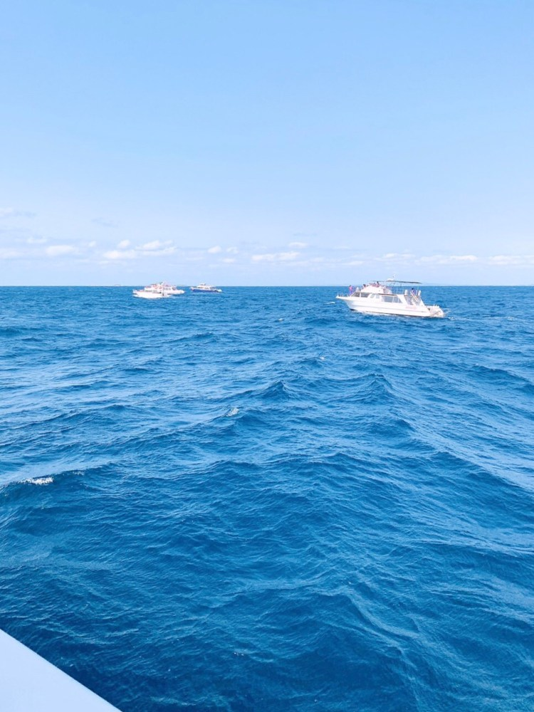 日本沖繩 4 天 3 夜旅遊規劃--瀨長島飯店、賞鯨、螃蟹吃到飽、海生館 15