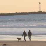Couple walking dog in mission beach