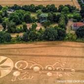 crop-22-07-2018