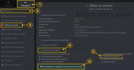 Éditer un serveur Virtualmin