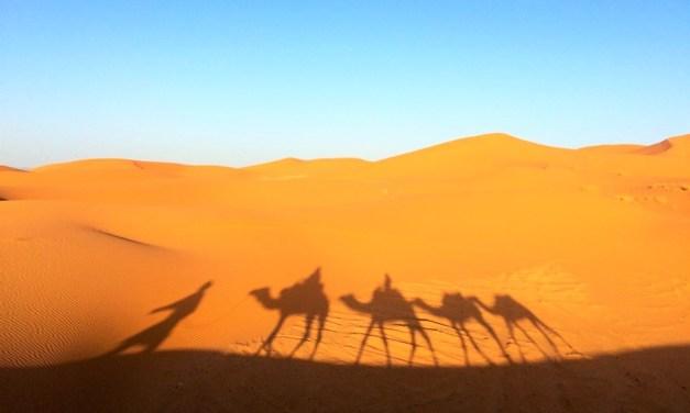 África: 7 Curiosidades que você precisa saber