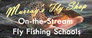 Learn to fly fish or brush up on your technique with our outstanding instructors.