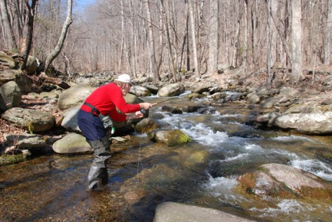 Winter schools on where to go fly fishing blog the for Shenandoah national park fishing