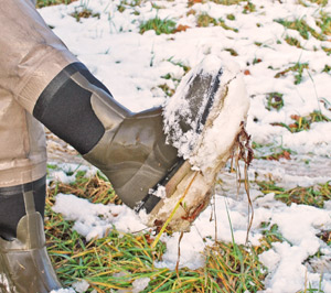 Harry with a bit of snow on his boots!